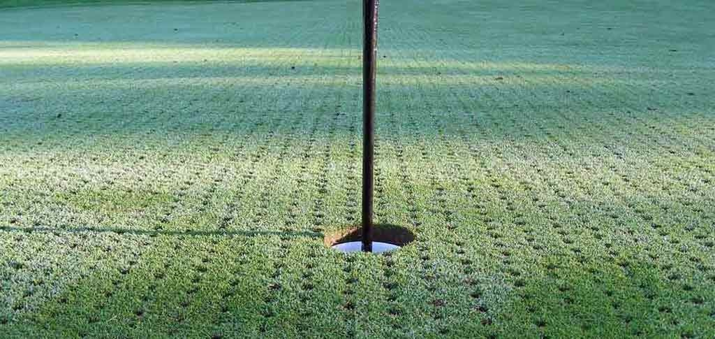 All About Aerating Greens